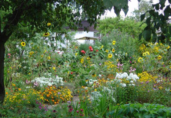 Natur- und Klimabewusstes Gärtnern