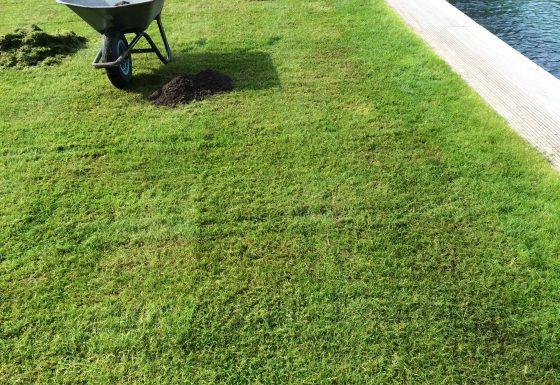 Rasenarbeiten