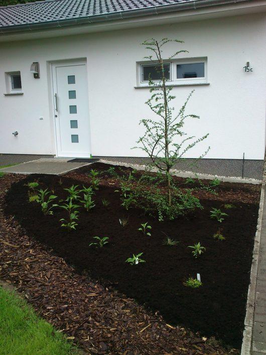 Gartengestaltung-Vorgarten