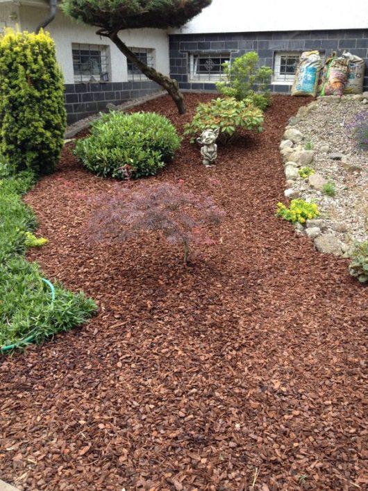 Gartengestaltung-Pinienrinde