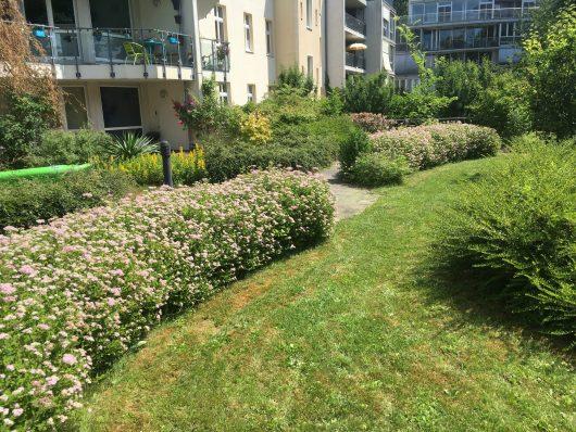 Gartenpflege im Objekt