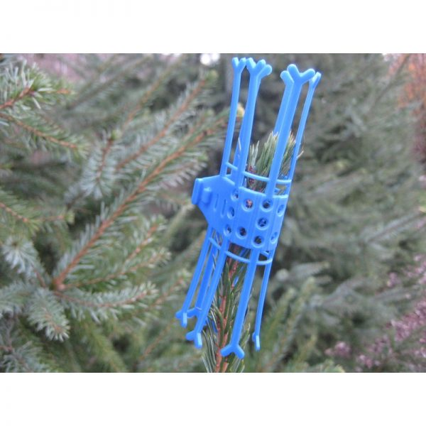 "Terminalschutzkappe Verbissschutz Kappe Trieb Schutz Kappe Knospenschutz Cactus ""blau"" 50x"